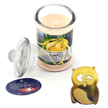 Nến thơm ngọc lan tặng miếng dán chắn sóng - Con Cú (Jar Candles Ylang)