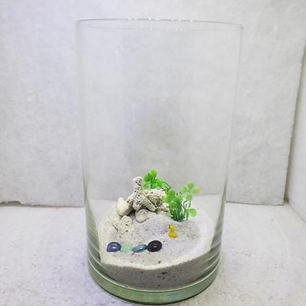 Bể cá mini để bàn COMBO kèm phụ kiện tiểu cảnh