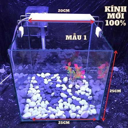 bể cá cubic 25cm combo đầy đủ phụ kiện - bể cá mini - bể cá để bàn mini - bể cá mini