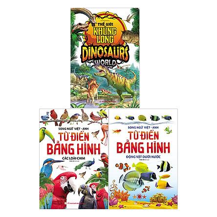 Combo Sách Từ Điển Anh-Việt Bằng Hình (Tặng Kèm Truyện Cổ Tích Bất Kỳ)