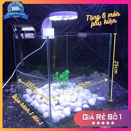 Bể cá mini để bàn CUBIC 25 COMBO HỒ LỌC ĐÈN Tặng phụ kiện trang trí