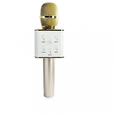 Micro hát karaoke Q7