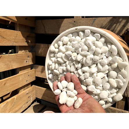 5 kilogam đá trang trí cây trồng - chậu nuôi cá SS6
