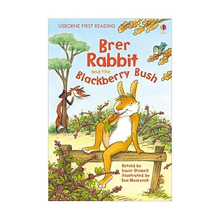 Usborne First Reading Level Two: Brer Rabbit and the Blackberry Bush