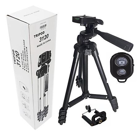 Chân máy ảnh Tripod 3120 tặng Giá kẹp điện thoại, Remote - Hàng Nhập Khẩu