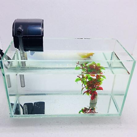Bể cá mini để bàn combo Hồ 30x13x15cm