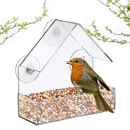 Nhà ăn cho chim cảnh bồ câu , nhà dụ chim thiên nhiên