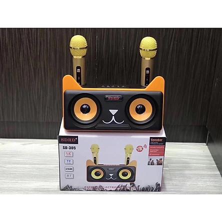 Loa Karaoke Bluetooth SD - 305 kèm 2 micro không dây - Hàng nhập khẩu