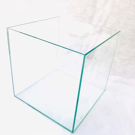 Bể cá mini Bể cá mini cubic