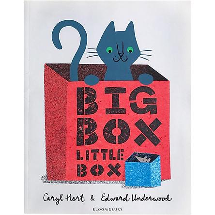 Big Box Little Box