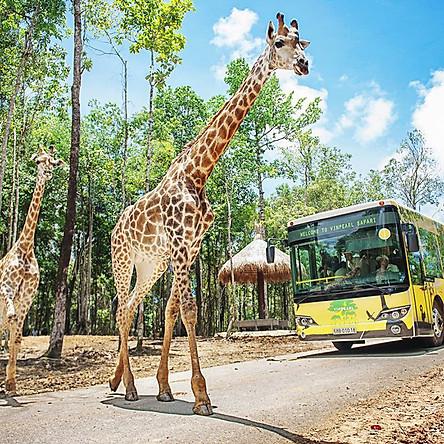 Vé Tham Quan Vinpearl Safari Phú Quốc