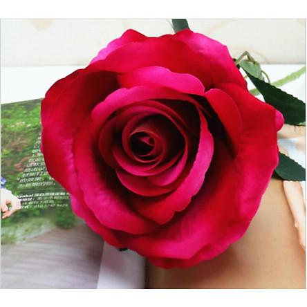 Combo 5 bông hoa hồng size to, hoa giả nhân tạo không kèm lọ hoa