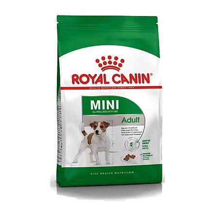 Thức ăn cho chó Royal Canin Mini Adult 800gr