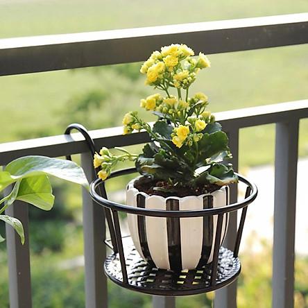 Giá sắt để chậu hoa và cây cảnh treo ban công sang trọng