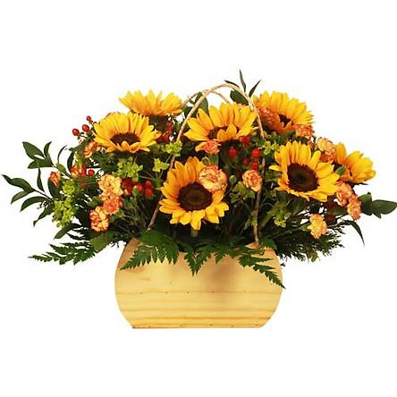 Hộp hoa tươi - Ánh Sáng Bất Tận 3940
