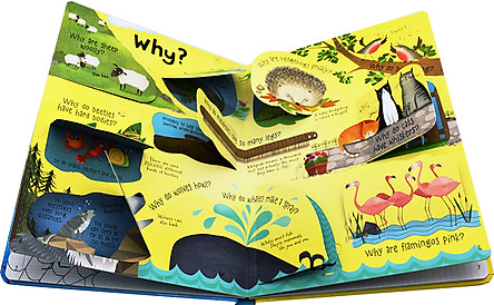 Usborne Lift-the-flap Questions and Answers about Animals