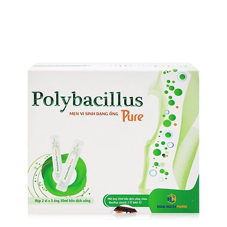Thực phẩm bảo vệ sức khỏe Polybacillus Pure bổ sung men vi sinh, chống táo bón, hỗ trợ tiêu hóa