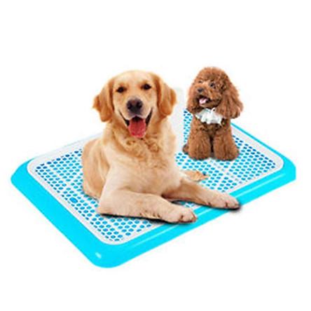 Khay vệ sinh cho chó đực và cái Kích thước size lớn loại có cọc Size 65x45cm thích hợp chó dưới 20kg MÀU NGẪU NHIÊN