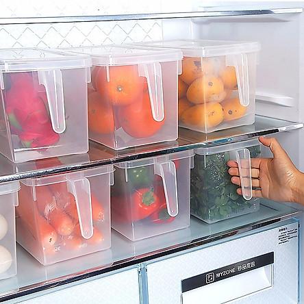 Hộp bảo quản thực phẩm (1 hộp)