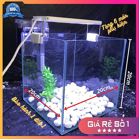 Bể cá mini CUBIC 20cm COMBO Hồ+ Lọc+ Đèn Tặng 6 món phụ kiện trang trí