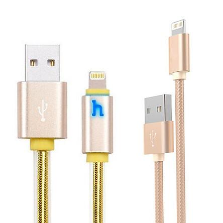 Bộ 2 dây cáp sạc Hoco X2 và Hoco UPL12 tốc độ sạc nhanh chóng tương thích các thiết bị Apple ( Vàng ) - Hàng chính hãng