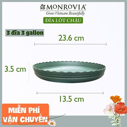 Combo 3 Đĩa lót chậu nhựa trồng cây MONROVIA 3 GL, chậu trồng cây, chậu cây cảnh mini, để bàn, treo ban công, treo tường, cao cấp, chính hãng thương hiệu MONROVIA