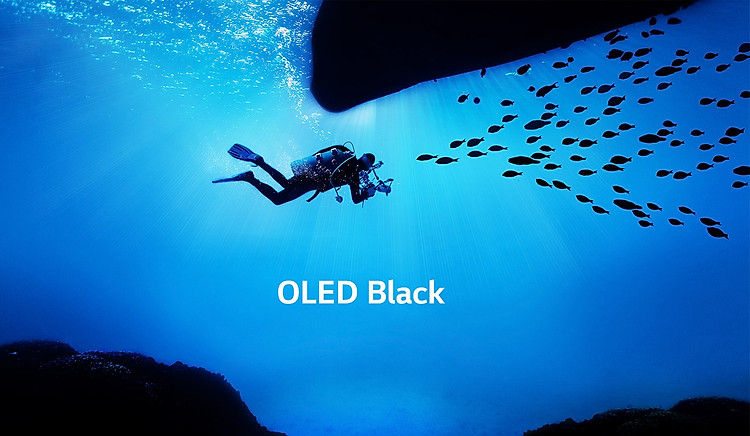 Tivi LED LG 65 inch OLED65C9PTA màu đen OLED