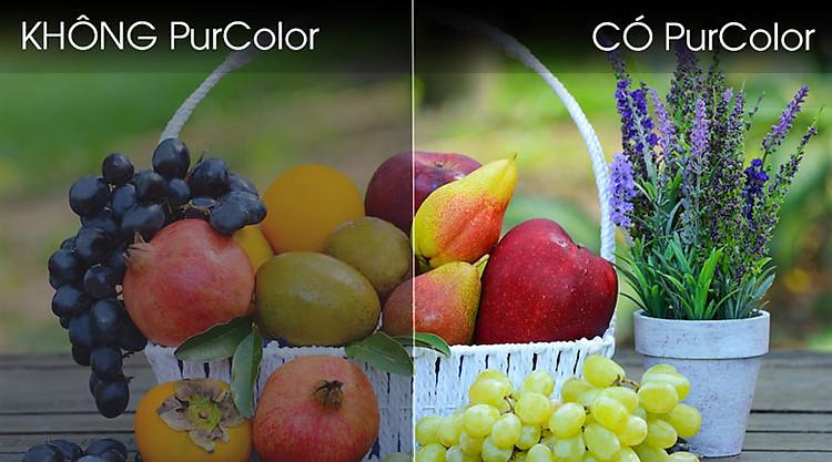Smart Tivi Samsung 4K 55 inch UA55TU7000-Purecolor