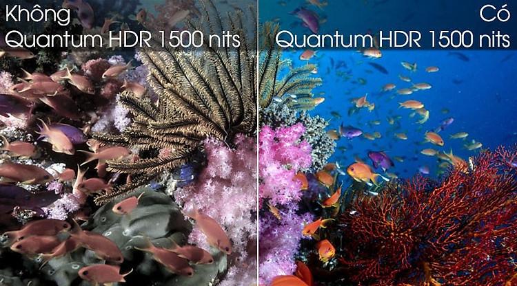 Quantum HDR 1500 nits-Smart Tivi QLED Samsung 4K 85 inch QA85Q80T