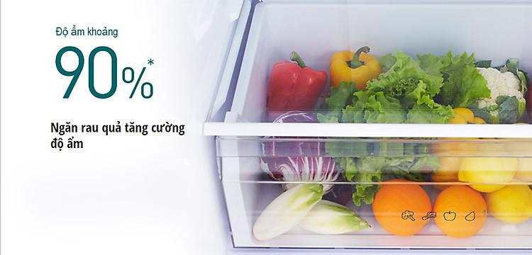 Tủ lạnh Panasonic NR-BV360QSVN dung tích 322 lít Thoải mái bảo quản thực phẩm