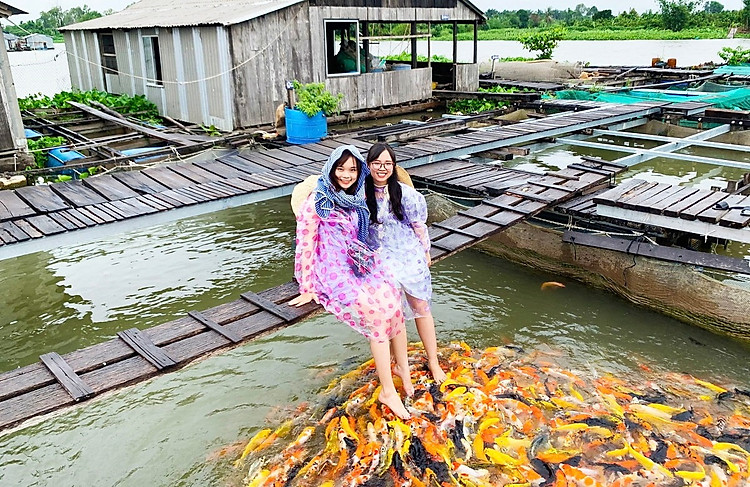 Làng cá bè cực đẹp ở Cồn Sơn - tour miền Tây 4 ngày 3 đêm
