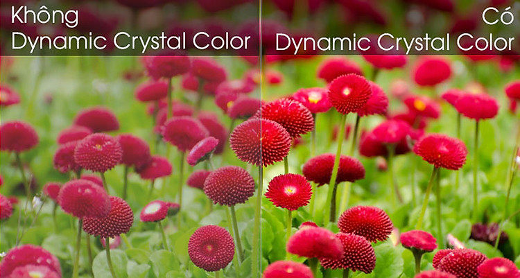 Smart Tivi Samsung 4K 55 inch UA55TU8500 - Dynamic Crystal Color