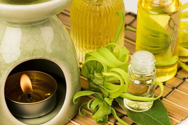 Tinh dầu Ngọc Lan Tây 100ml Mộc Mây - tinh dầu thiên nhiên nguyên chất 100% - chất lượng và mùi hương vượt trội 15