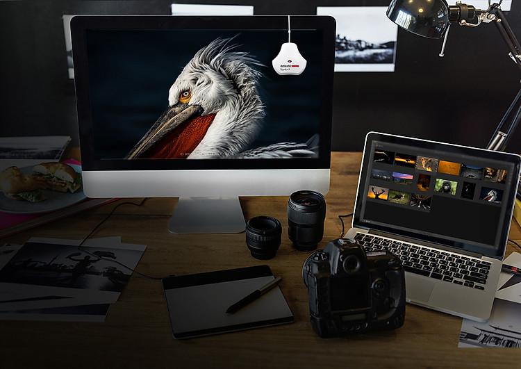 cân-màu-màn-hình-Datacolor-Spyder-Pro