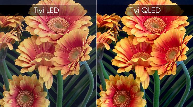 Smart Tivi QLED Samsung 4K 55 inch QA55Q65R - Màn hình chấm lượng tử QLED