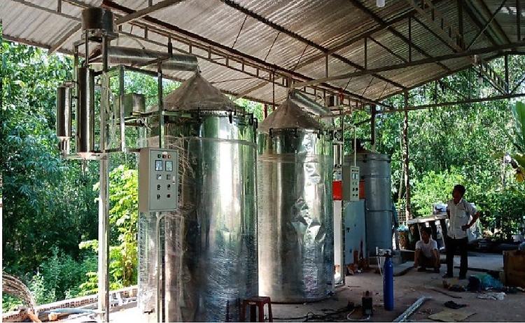 Tinh dầu Hương Nhu 100ml Mộc Mây - tinh dầu thiên nhiên nguyên chất 100% - chất lượng và mùi hương vượt trội - chuyên gia chăm sóc tóc hư tổn 14