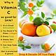 Serum Dew&Dew Vitamin C Treatment Serum - DEW&DEW03 - 50ml
