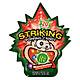 Combo 12 gói Kẹo nổ Striking Watermelon 30gr (Vị Dưa hấu)