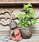 Tượng chú tiểu kéo túi tiền - trồng cây, cắm hoa trang trí
