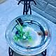 Bể cá mini để bàn xe đạp