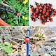 Bộ tưới cây tự động cho 20 chậu cây kèm van hẹn giờ tưới tự động