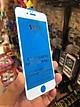 Kính cường lực 10D cho iphone
