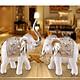 Cặp voi decor trang trí - màu trắng