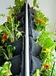 Túi vải trồng cây 21 túi