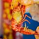 Lobster Bay - Voucher 500g Crawfish Sốt Tự Chọn