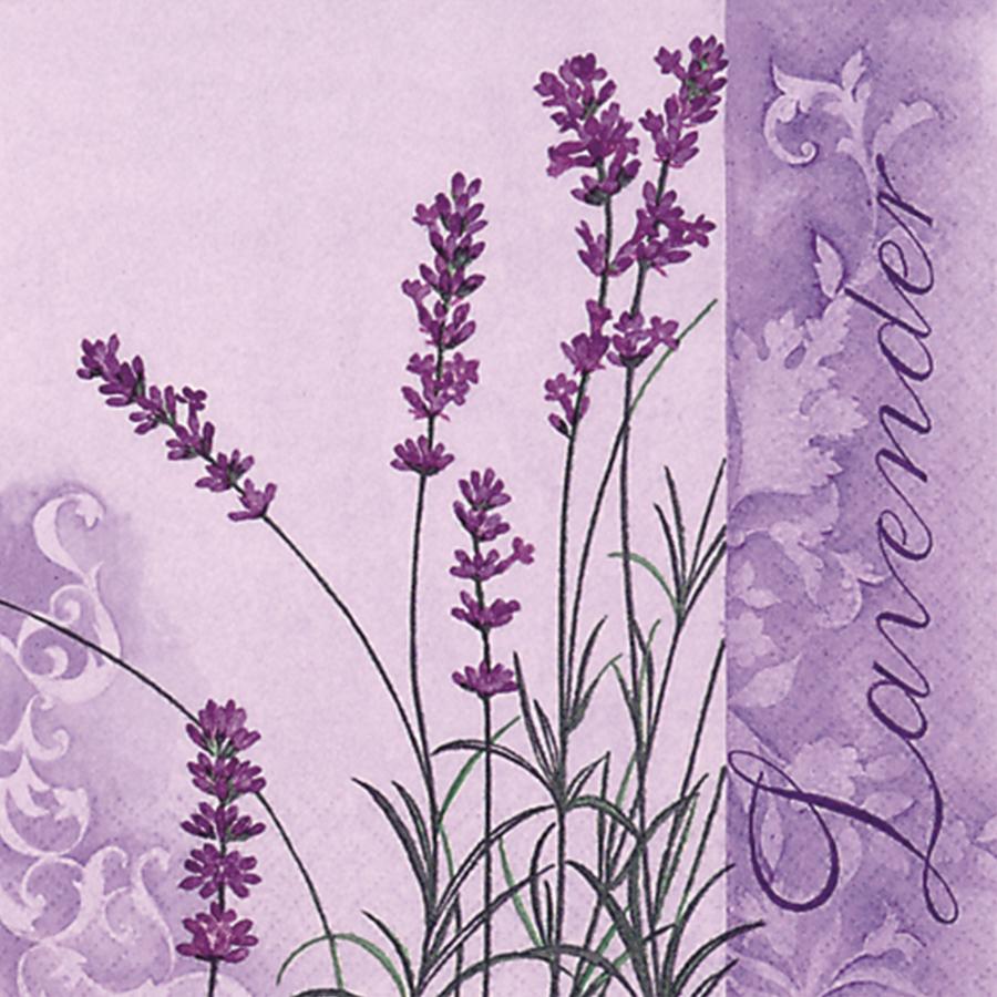 Khăn Giấy Ăn Trang Trí Bàn Tiệc Tissue Napkins Design Ti-Flair 344612 (33 x 33 cm)
