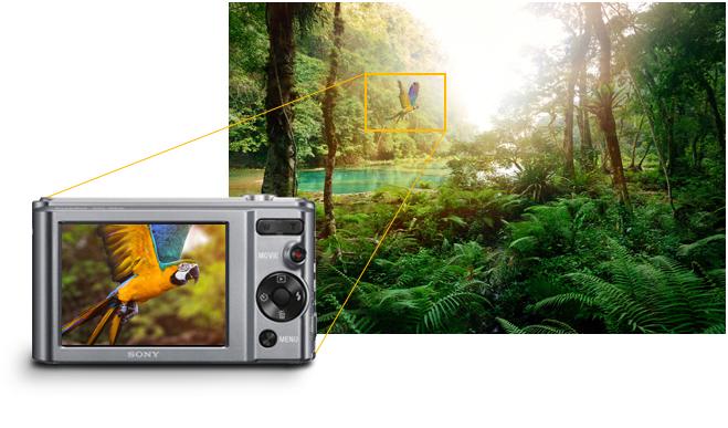 Sony W830 Ghi và chia sẻ những bức ảnh thật chi tiết