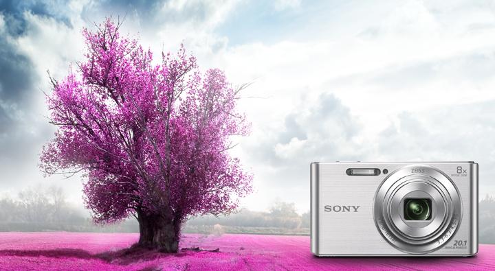 Máy Ảnh Sony DSC W830 - 20.1 Megapixel, Zoom 8x