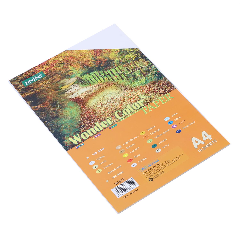 Bìa Màu Kỹ Thuật A4 8422 - Mẫu Ngẫu Nhiên