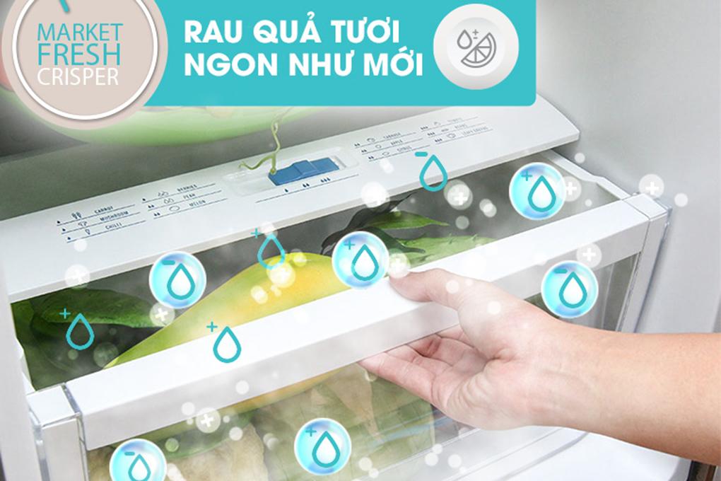Tủ Lạnh Inverter Electrolux EME3500MG-RVN (335L)